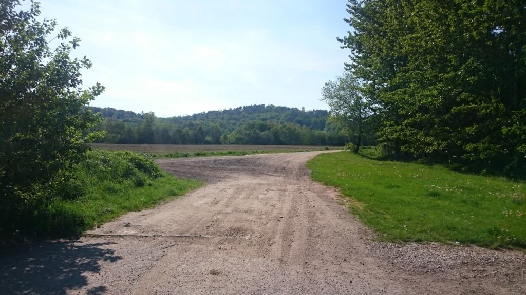 biegnasleze-trasa-2017-1