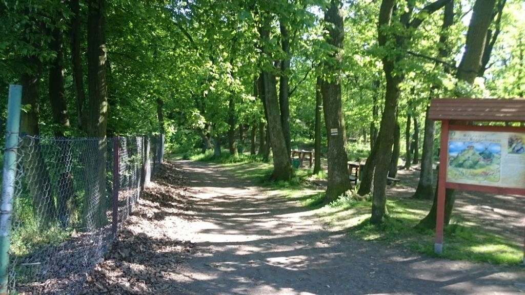 biegnasleze-trasa-2017-15