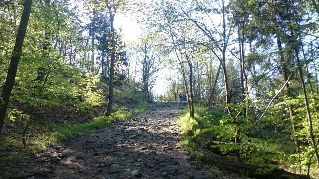 biegnasleze-trasa-2017-36
